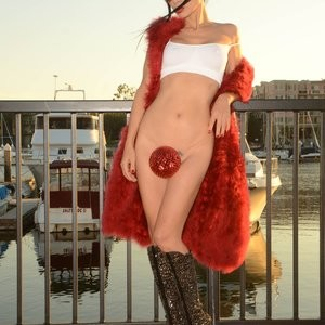 Celebrity Leaked Nude Photo Bai Ling 055 pic