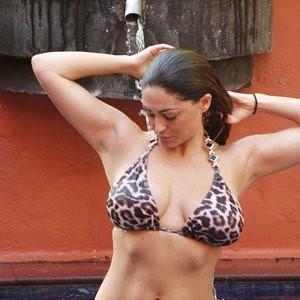 Best Celebrity Nude Casey Batchelor 034 pic