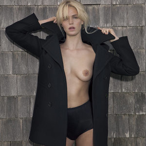 Free nude Celebrity Erin Heatherton 004 pic