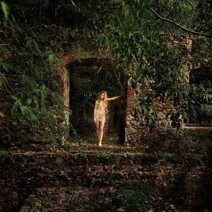Nude Celebrity Picture Hannah Davis 004 pic