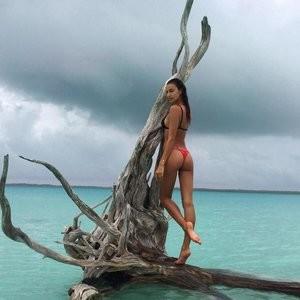 Irina Shayk Ass (1 Photo) – Leaked Nudes