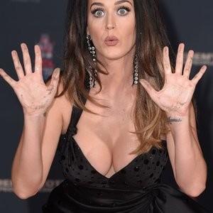 Celeb Nude Katy Perry 019 pic