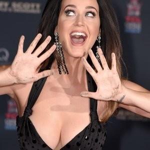 Celeb Naked Katy Perry 020 pic