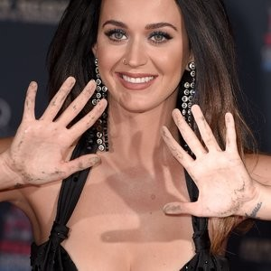 Leaked Celebrity Pic Katy Perry 022 pic