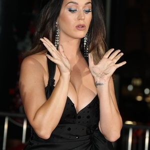 Real Celebrity Nude Katy Perry 035 pic