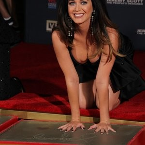 Nude Celeb Katy Perry 045 pic
