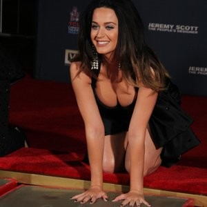 Free Nude Celeb Katy Perry 047 pic