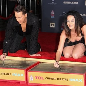 Nude Celeb Katy Perry 083 pic