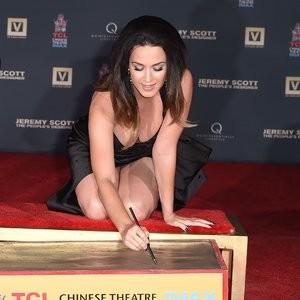 celeb nude Katy Perry 096 pic
