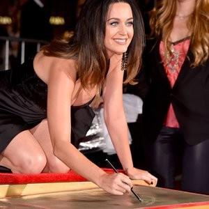 Celeb Nude Katy Perry 101 pic