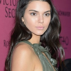 Kendall Jenner See Through (22 Photos) - Leaked Nudes