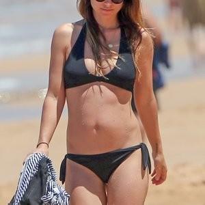 Best Celebrity Nude Olivia Wilde 009 pic