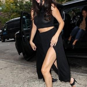 Nude Celebrity Picture Selena Gomez 007 pic
