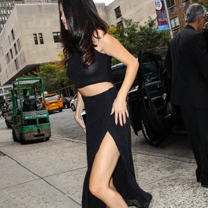 Nude Celeb Selena Gomez 009 pic