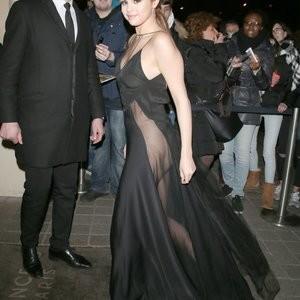 Best Celebrity Nude Selena Gomez 002 pic